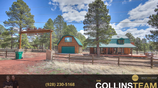 Luxury Cabin Style Home in Williams az