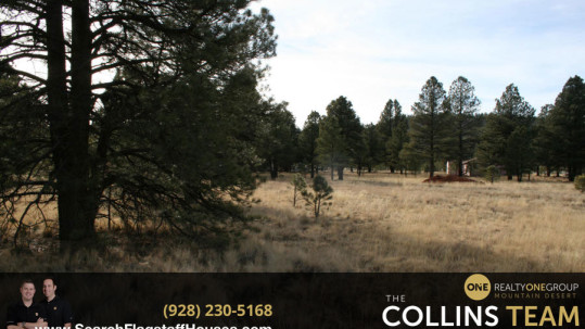 Homes for sale in Sherwood Forest Estates Flagstaff AZ