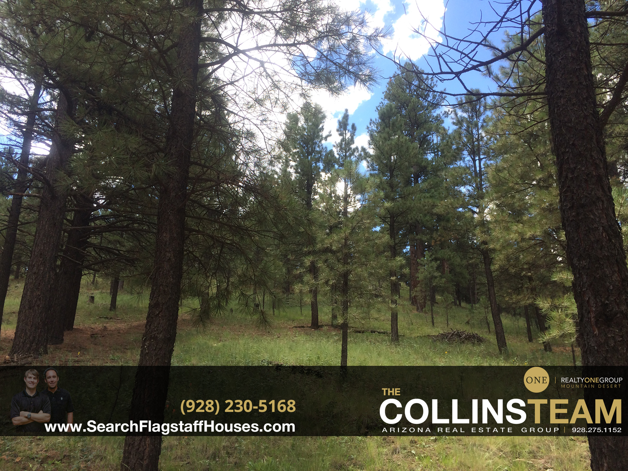 flagstaff land for sale