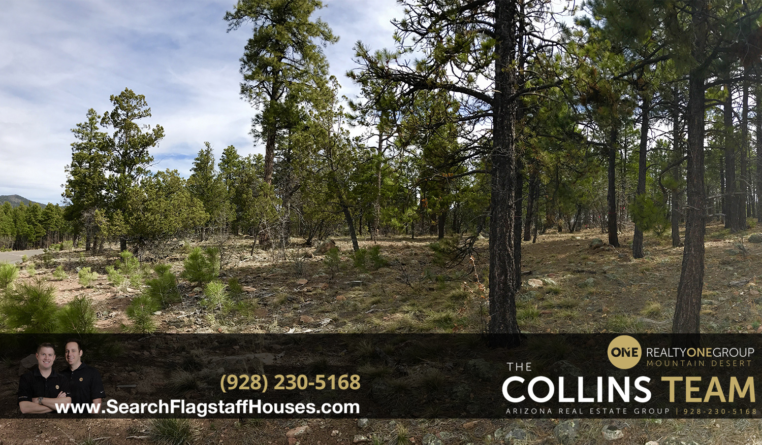 Lots for Sale in Williams AZ