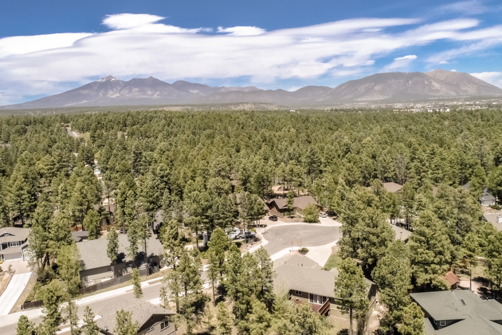 Flagstaff Real estate auction