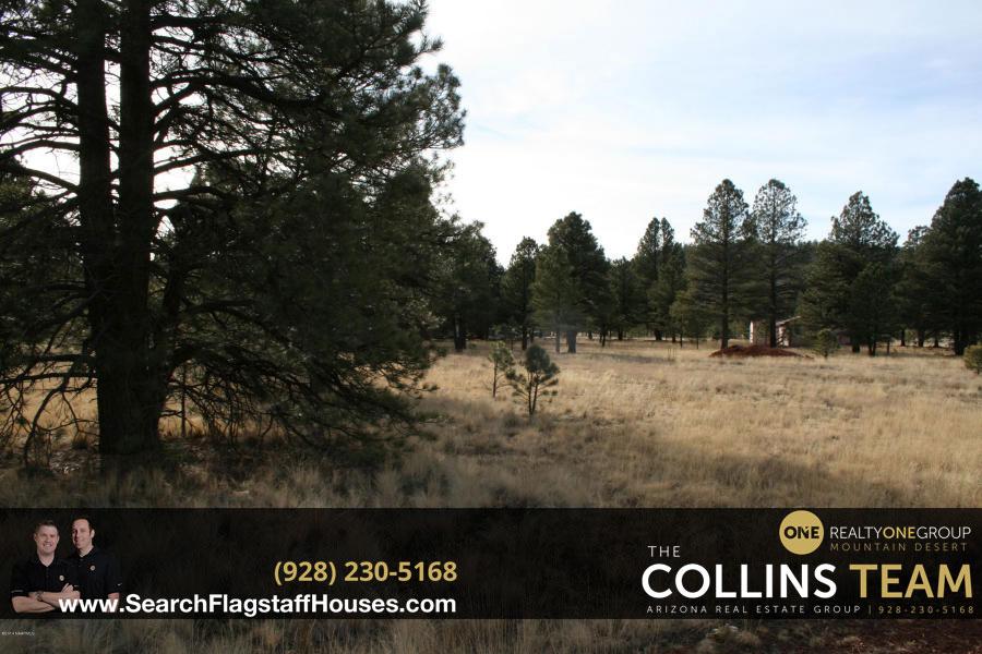 Homes for sale in Sherwood Forest Estates Flagstaff AZ